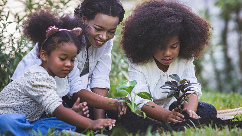 planning a garden with children