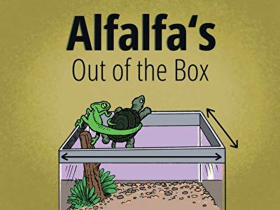 Alfalfa's Out of the Box: Perimeter, Area, and Addition