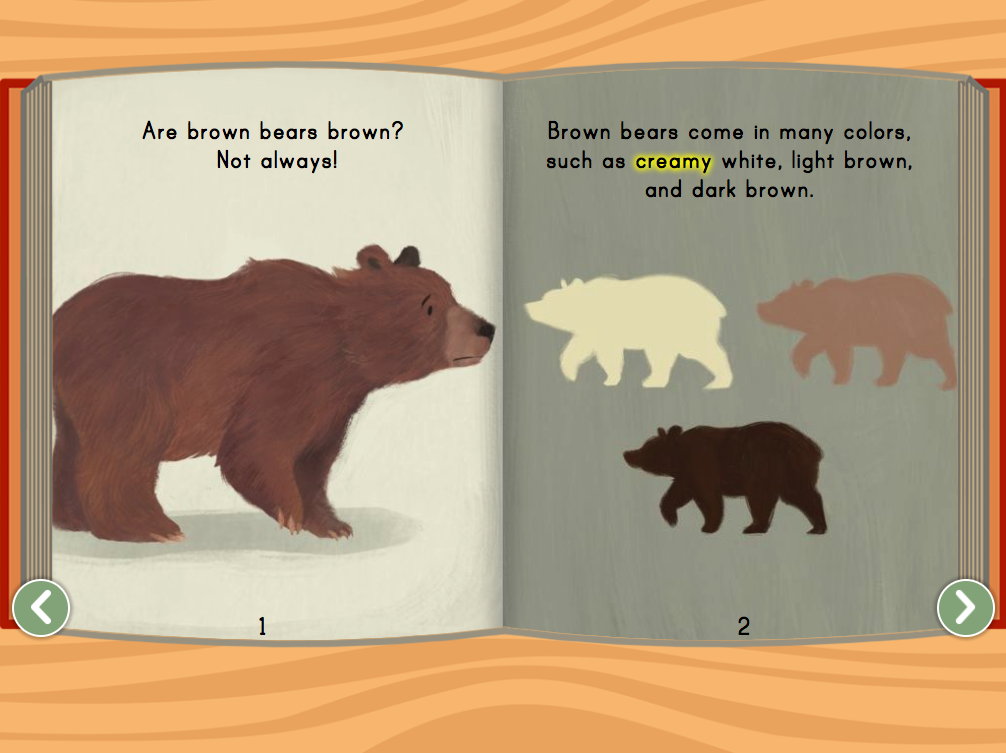 Kindergarten Reading & Writing Stories: Brown Bears Story
