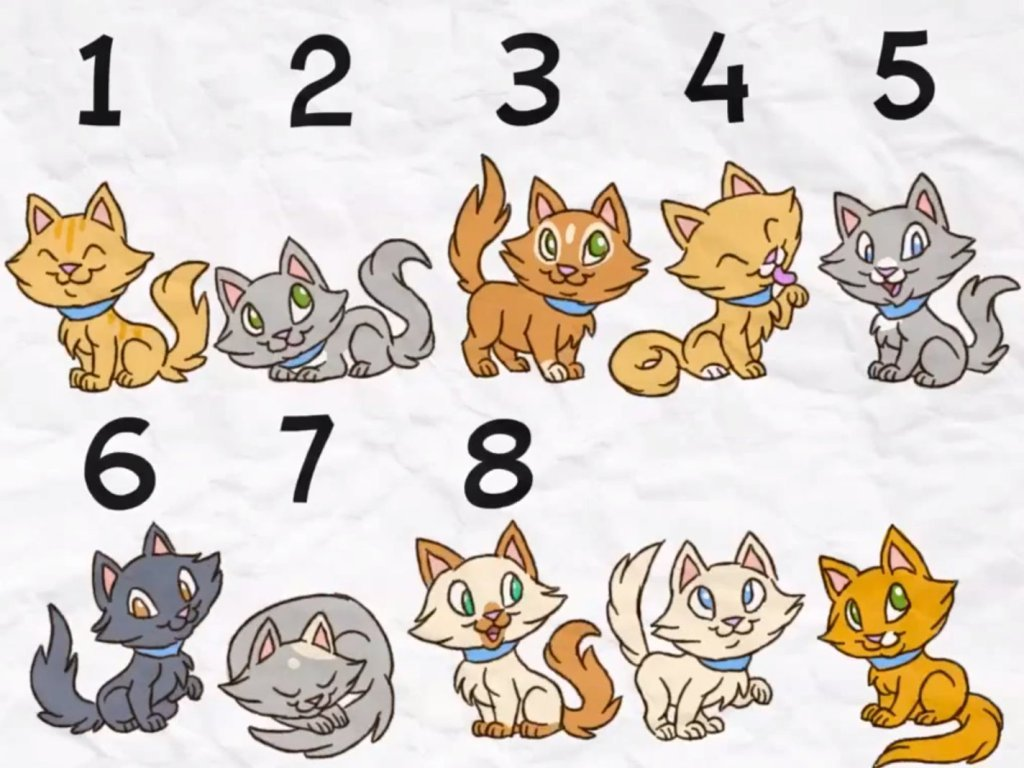 Preschool Math Songs: Pet Shop Counting Song