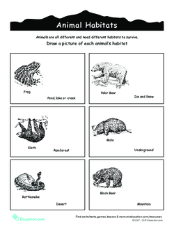 Animal Habitats Coloring