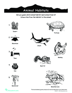 Animal Habitats Match-Up