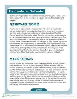 Freshwater Biomes and Saltwater Biomes