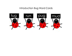 Bug Word Cards