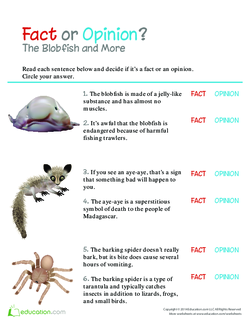 Fact or Opinion? The Blobfish and More