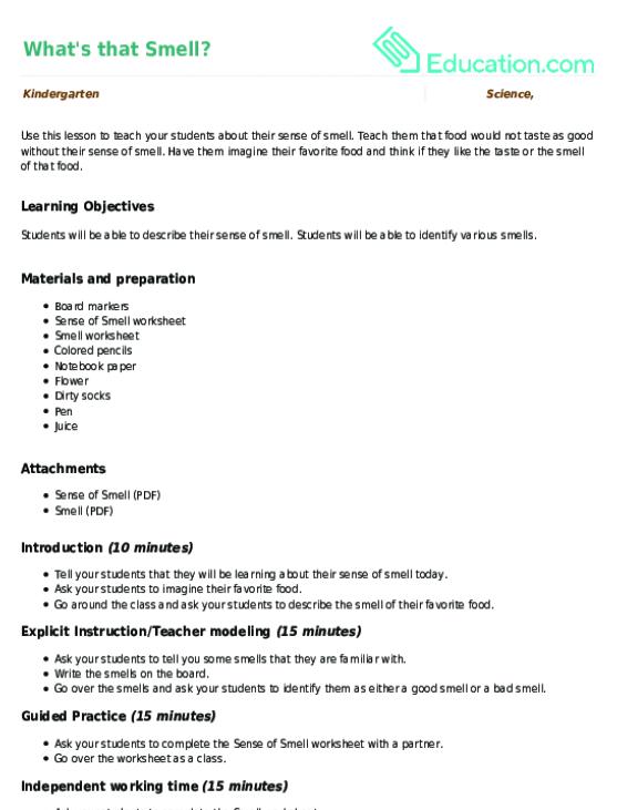 Kindergarten Science Lesson Plans Education