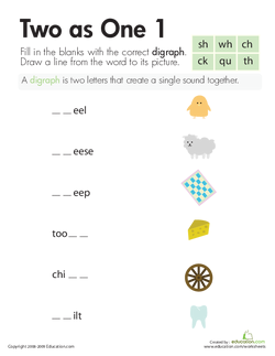 Digraphs: Two as One