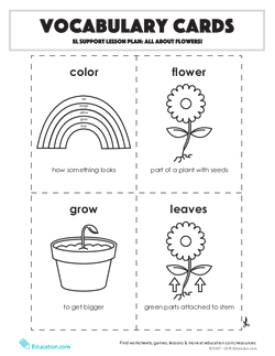 Vocabulary Cards: EL Support Lesson: All About Flowers
