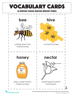 Vocabulary Cards: Buzzing Sensory Poems