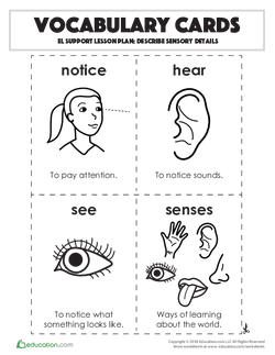 Vocabulary Cards: Describe Sensory Details