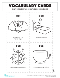 Vocabulary Cards: So Many Sounds in a CVC Word