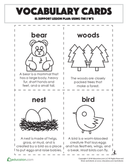 Vocabulary Cards: Using the 5 W