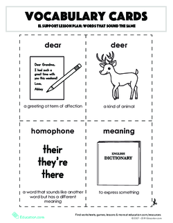 Vocabulary Cards: Words that Sound the Same