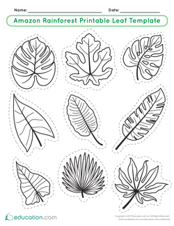 Amazon Rainforest Printable Leaf Template