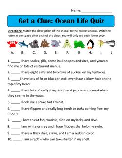 Ocean Life Quiz