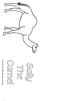 Sally the Camel Booklet