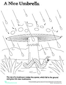 Connect the Dots: Mushroom Umbrella
