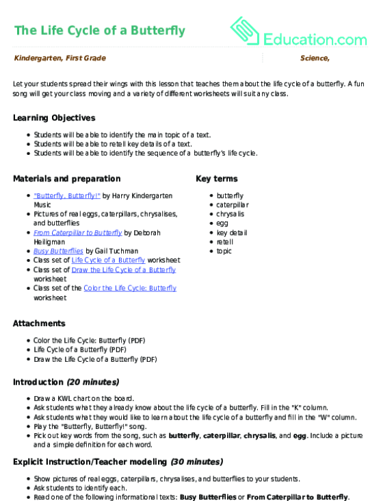 The Life Cycle Of A Butterfly Lesson Plan Educationcom - Learning cycle lesson plan template