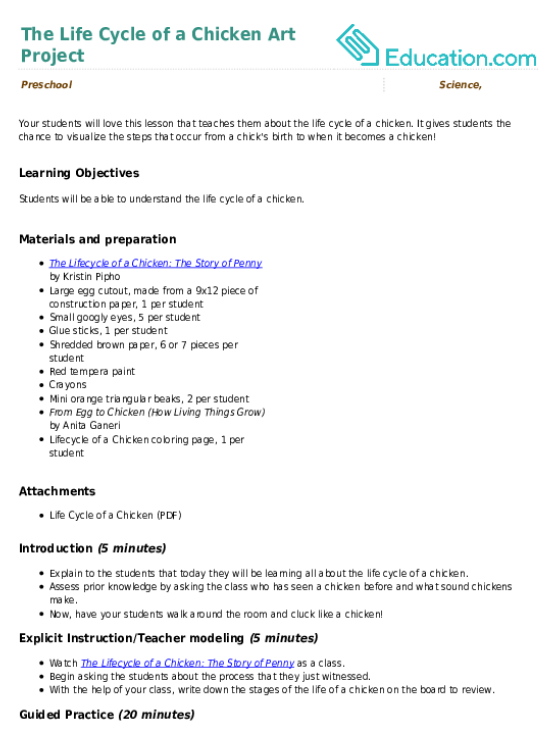 The Life Cycle of a Chicken Art Project | Lesson Plan | Education.com