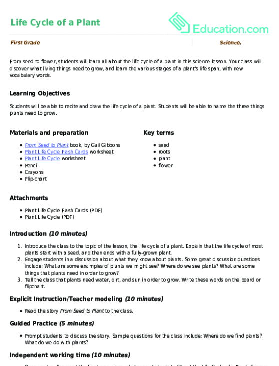 life cycle of a plant lesson plan com