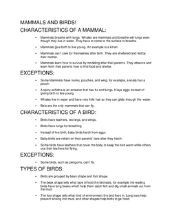 Mammals and Birds!