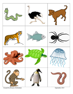 Move Like An Animal Lesson Plan Education Com Lesson Plan