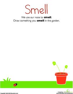 Senses: Smell