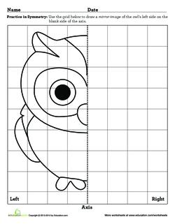 Learning Symmetry Owl