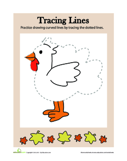 Tracing Lines: Thanksgiving