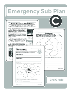 Third Grade Sub Plan (black and white): Day 3