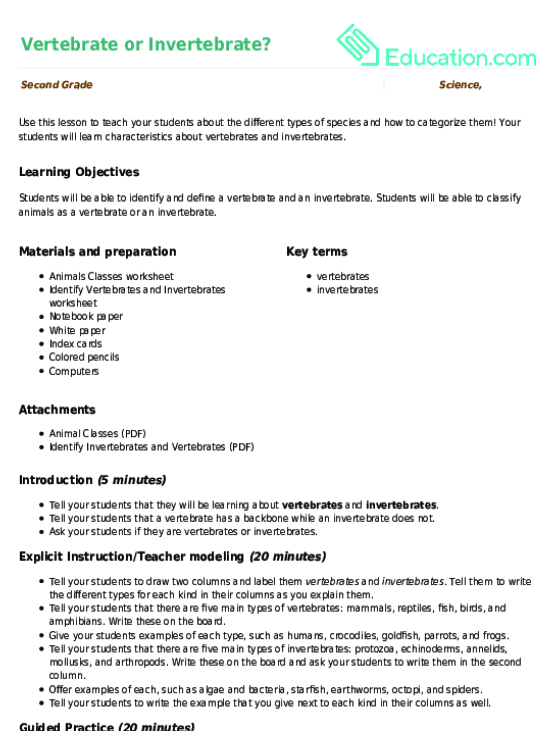 Vertebrate or Invertebrate Lesson Plan – Vertebrate Worksheet