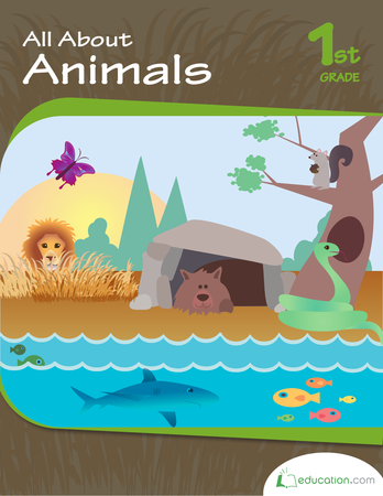 First Grade Reading & Writing Workbooks: All About Animals