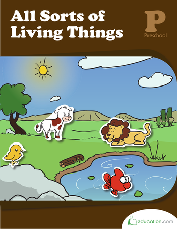 All Sorts of Living Things | Workbook | Education.com