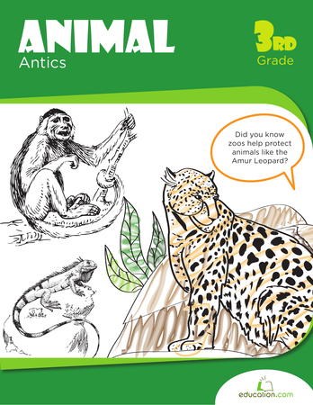 Third Grade Reading & Writing Workbooks: Animal Antics