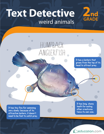 Second Grade Reading & Writing Workbooks: Text Detective: Weird Animals