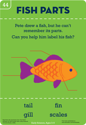 Kindergarten Science Worksheets: Get Fishy: Beginner's Biology