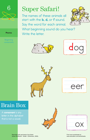 Letter Sounds: Practicing B, D, and F