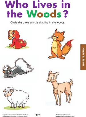 Kindergarten Science Worksheets: Who Lives in the Woods?