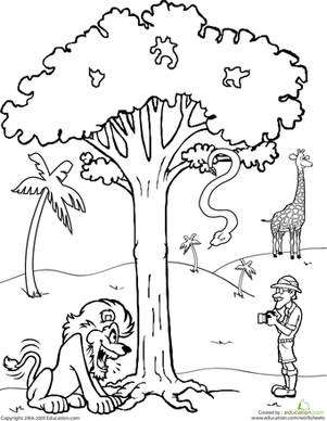 First Grade Coloring Worksheets: Color the Safari Scene