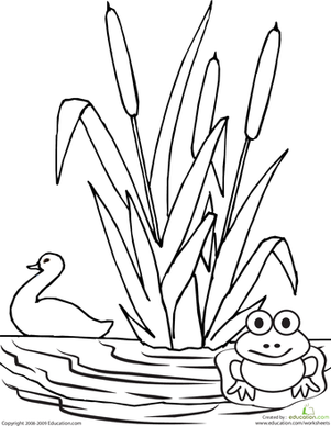 color the pond worksheet this simple coloring page features a pond scene