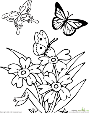 Kindergarten Coloring Worksheets: Butterfly Coloring Page