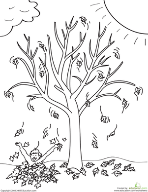 First Grade Coloring Worksheets: Fall Tree Coloring Page