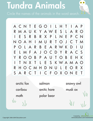 Habitats Word Search: Tundra Animals