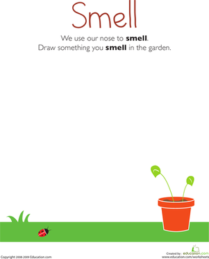 Kindergarten Science Worksheets: Our Five Senses: Smell