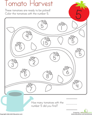 Kindergarten Math Worksheets: Coloring 5: Tomato Harvest