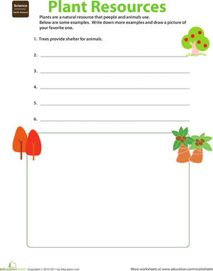 Second Grade Science Worksheets: Natural Resources: Plants
