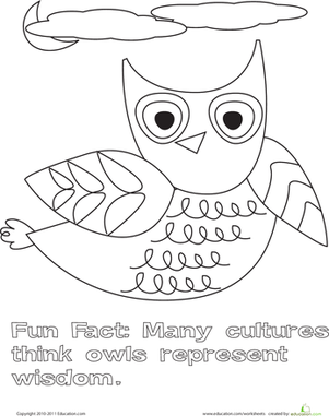 Color the Flying Owl