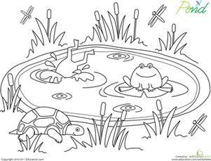 Preschool Coloring Worksheets: Pond Life Coloring Page