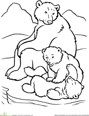 Polar bear family worksheet for Polar bear coloring pages