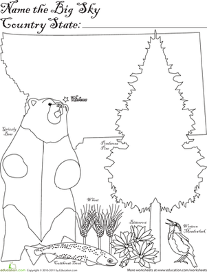 First Grade Social studies Worksheets: Big Sky Country State
